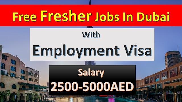 Fresher Jobs In Dubai | Dubai Fresher Jobs | Apply Fast |