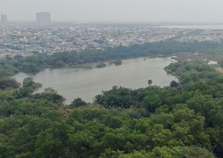 Kolaborasi Demi Wujudkan SMMA Sebagai Pusat Edukasi Lingkungan dan Restorasi Ekosistem Mangrove di Jakarta