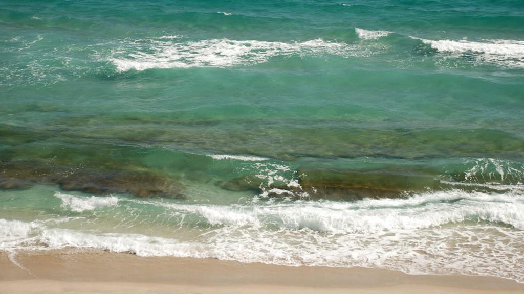 10 Best Beaches To Snorkel in Florida