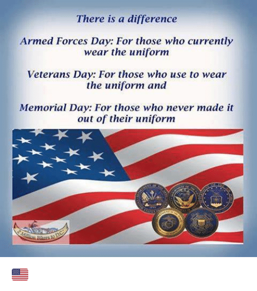 Armed+Forces+Veterans+Day