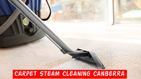 Best Carpet Cleaning Services and Germs Free Your Carpet and House