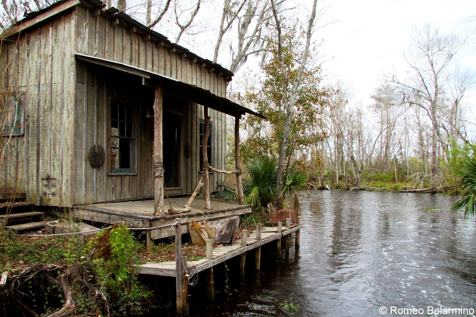 Jean Lafitte Louisiana Swamp Tours