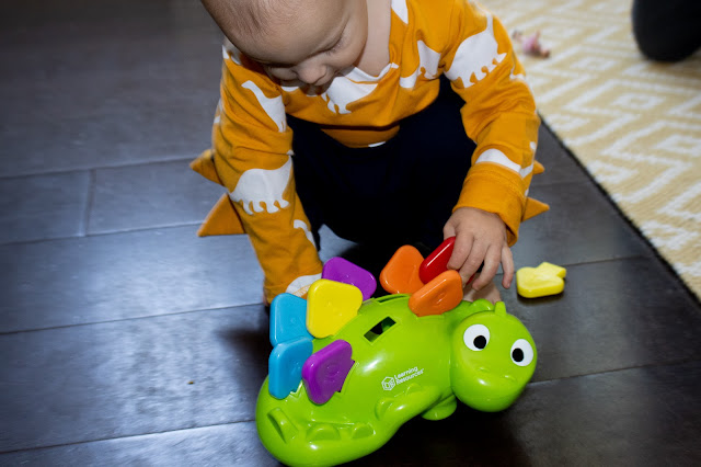 my 1 year old pulling all the colourful spikes out of Learning Resources Steggy the fine motor dino after his sister has put them in