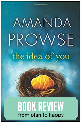 The Idea of You by Amanda Prowse is a novel that begins with a woman feeling heartache and longing for a family. It's impossible not to root for Lucy as she struggles to find her way and to figure out where true happiness comes from in this women's fiction novel.
