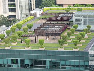 telhado verde vantagens