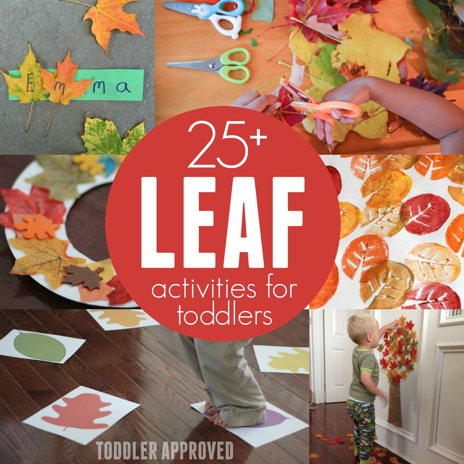 Toddler Approved 25 Leaf Activities For Toddlers