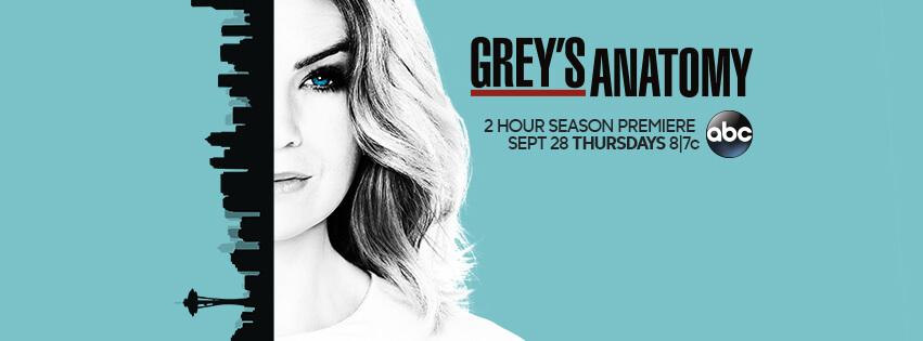 Anatomia lui Grey Sezonul 14 episodul 9