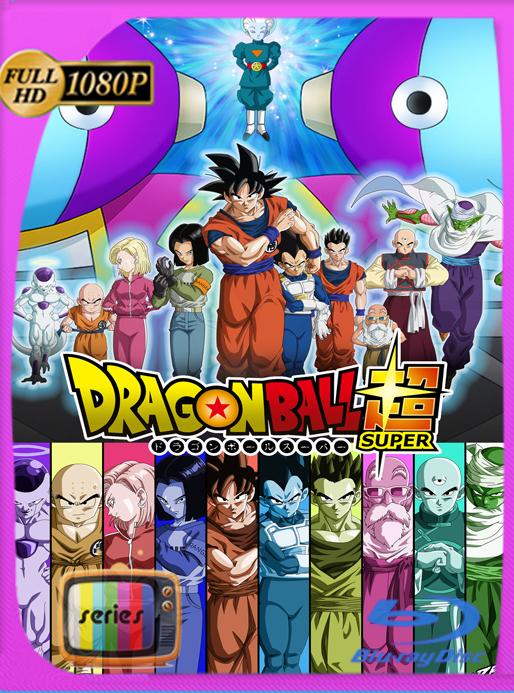 Dragon Ball Super Serie Completa [131/131] [1080p] [Google Drive] [SilvestreHD]