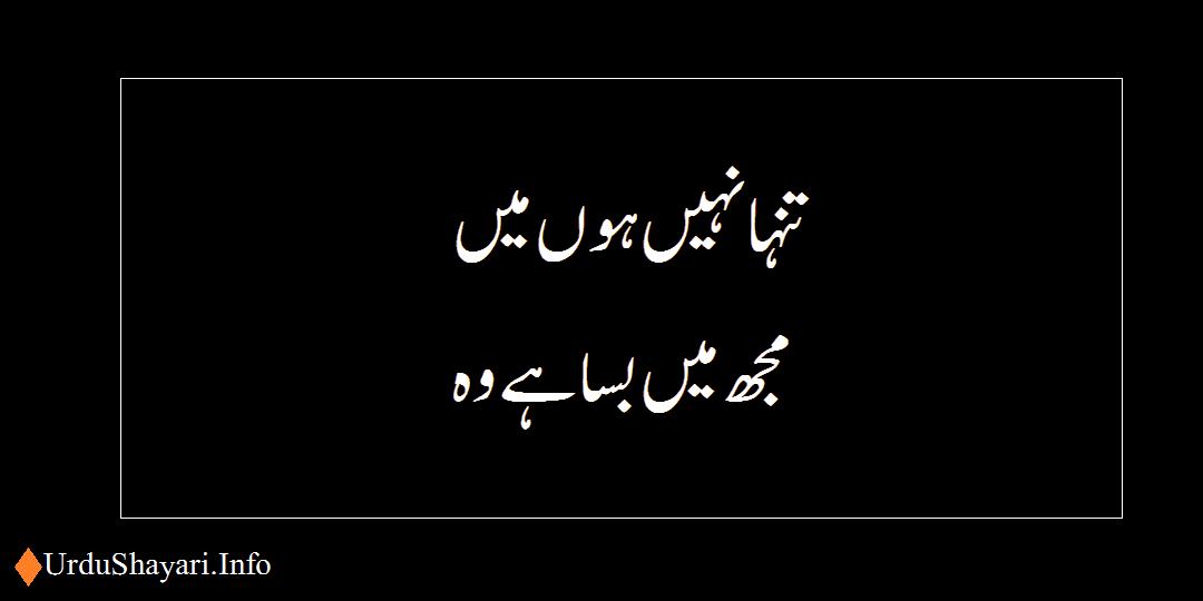 Tanha Nahi Hon Touching Shayari in Urdu - 2 lines poetry for whatsapp status