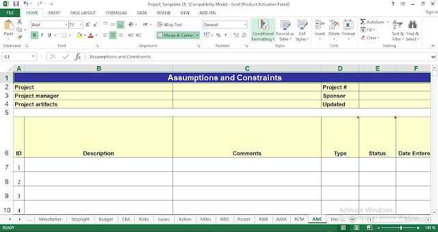 assumptions and constraints template