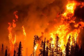 Incendio forestales en alaska deja  cenizas a decenas de viviendas y centenares de evacuados.