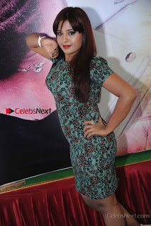 Kannada Actress Soujanya Stills in Short Dress at Nanobbne Olleyavnu Movie Audio Release  0003.jpg