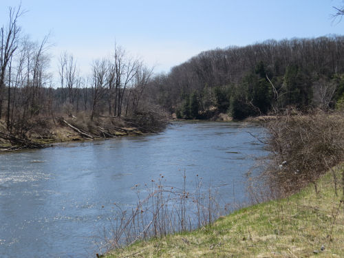 Manistee River in Leitch Bayou
