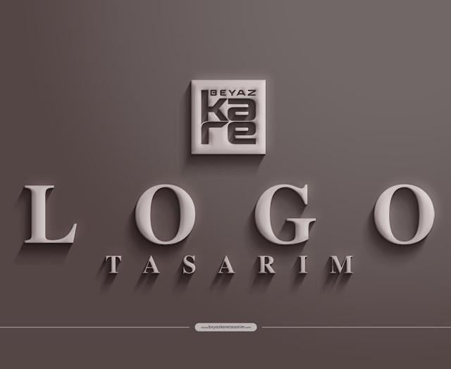 3D logo tasarımı mat duvar