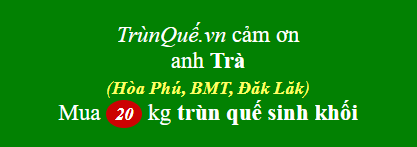 Trùn quế Hòa Phú