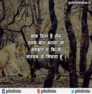 Nawabi Status Hindi