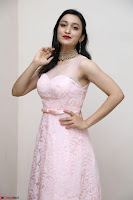 Sakshi Kakkar in beautiful light pink gown at Idem Deyyam music launch ~ Celebrities Exclusive Galleries 011.JPG