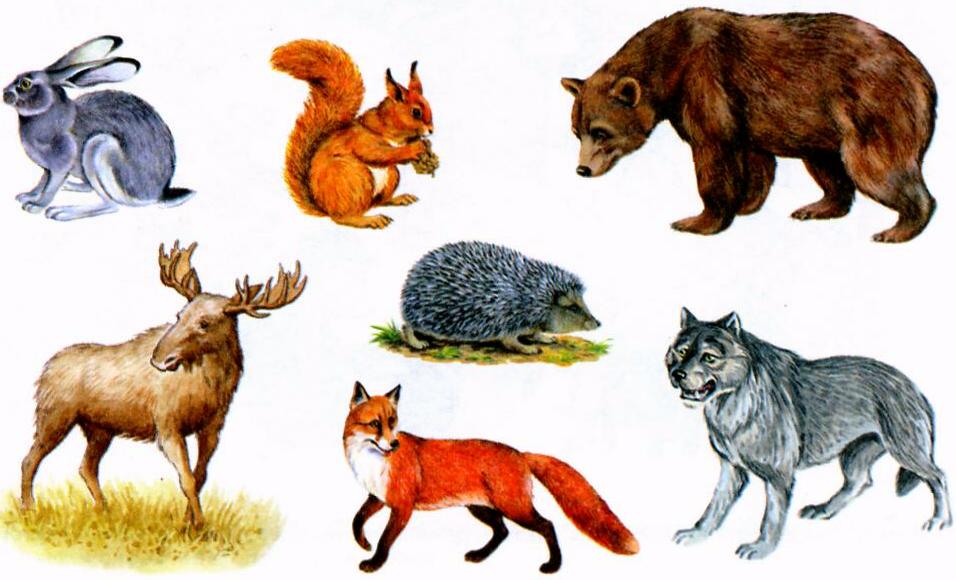 картинка волка и зайца и белки калинкой называется народно-сценический