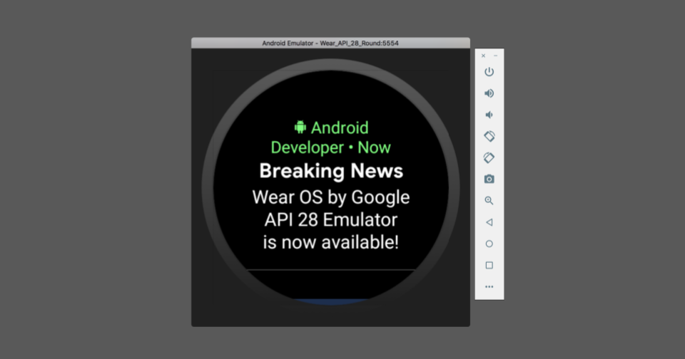 Android Developers Blog: Wear OS by Google: final API 28