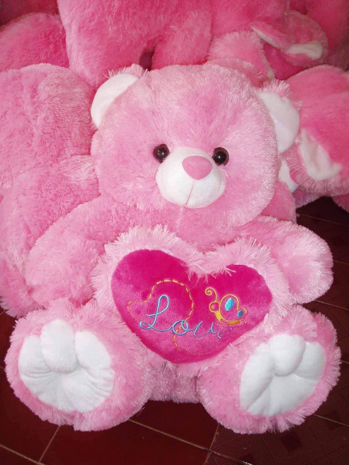 Kumpulan Gambar Foto Boneka Hello Kitty Danbo Naranua