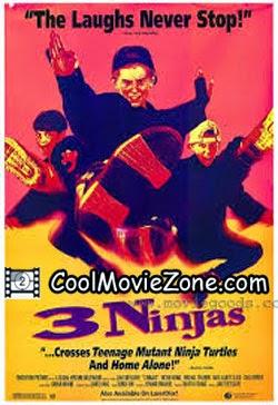 3 Ninjas (1992) Hindi Dubbed