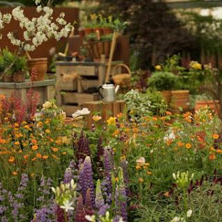 Chelsea Flower Show 2021 se celebrará en septiembre, ofreciendo jardines y exhibiciones de plantas otoñales