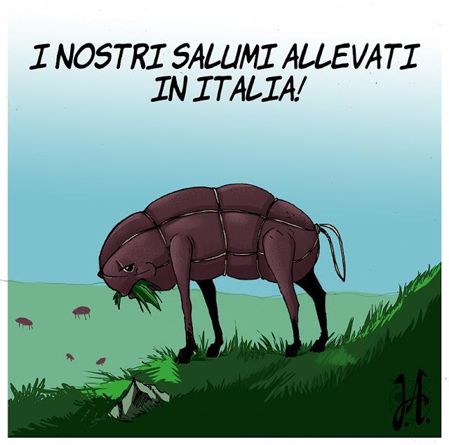 salumi-allevati-italia-luciaalocchiart