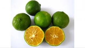 The Latest Of 8 Benefits of Orange Sonkit for Body Health - Healthy T1ps