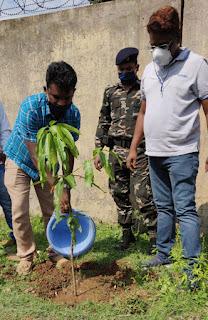 tree-planting-jamshedpur