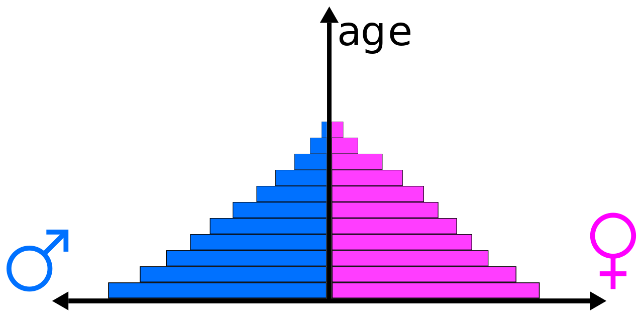 medium resolution of a population pyramid shows the total picture of a population by age sex it is a useful way to illustrate the age structure of population