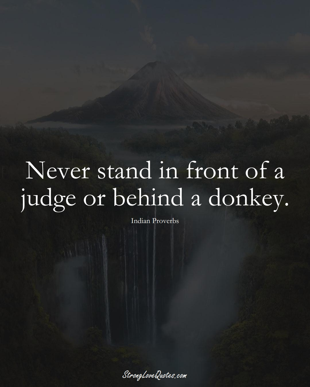 Never stand in front of a judge or behind a donkey. (Indian Sayings);  #AsianSayings