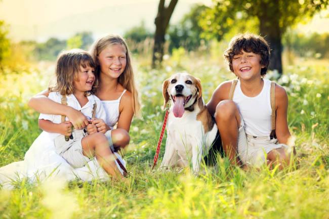 Wpływ psa na rozwój emocjonalny dziecka