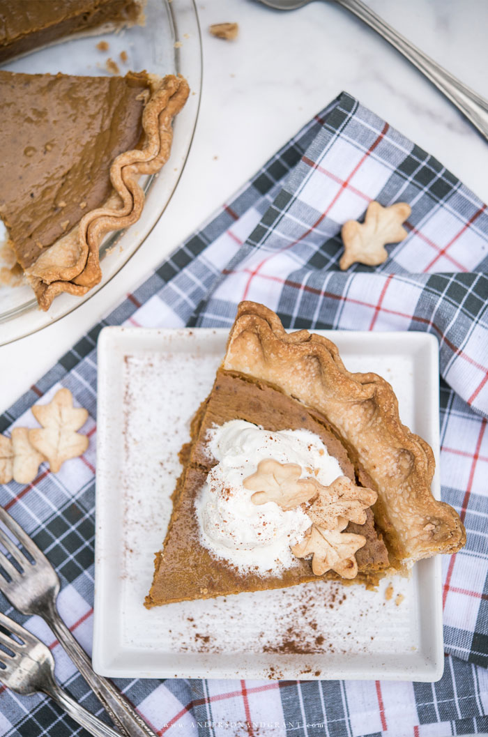 Slice of fall pumpkin pie