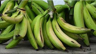 gambar buah pisang tanduk