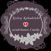 http://misiowyzakatek.blogspot.com/2020/02/hop-blog-czyli-1-urodziny-bloga-swiry.html