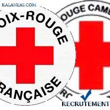 Croix-Rouge Camerounaise et la Croix-Rouge Française recrutent Un(e) Superviseur Mobilisation