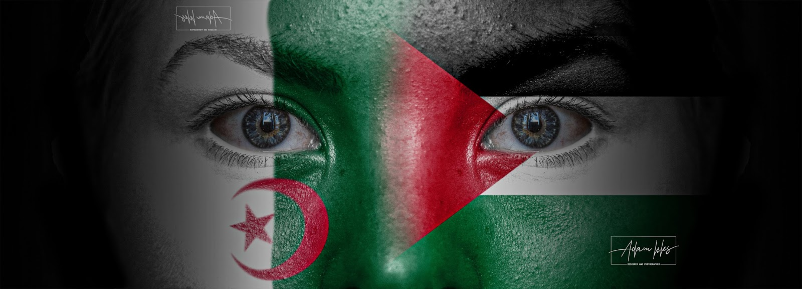 علم الجزائر وعلم فلسطين