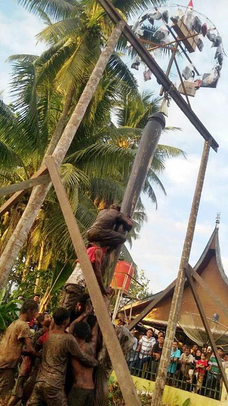 Batang Pinang Biasa! Panjat Batang Pisang Bagomok di Gadur baru Luarbiasa!