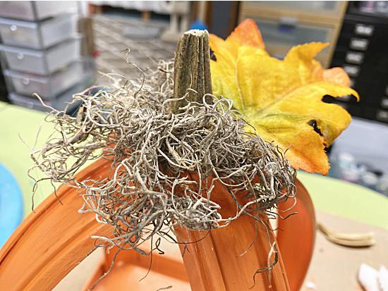 pumpkin stem, leaf and spainish moss