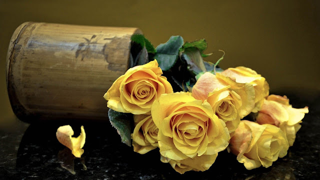 bunches of yellow roses with green leaves HD flowers
