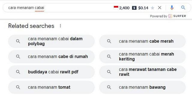 kata-kunci-di-google-4