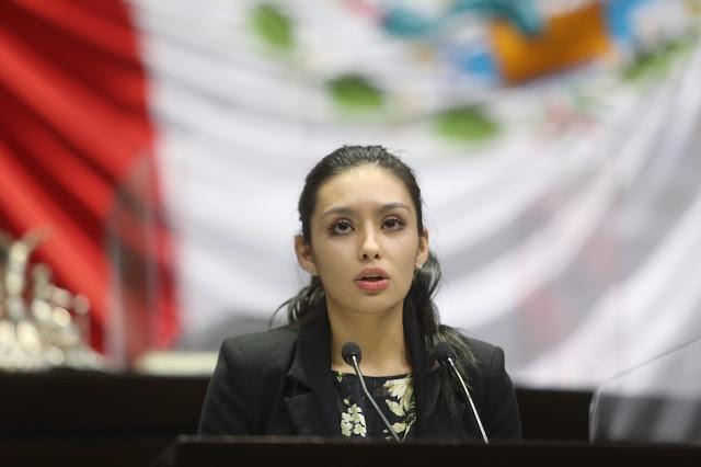 Penosa actuación de titular de CNDH en caso Notimex, pedirán comparencia
