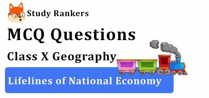 MCQ Questions for Class 10 Geography: Ch 7 Lifelines of National Economy