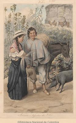 cerdo negro, chirimoya, caballo siglo xix
