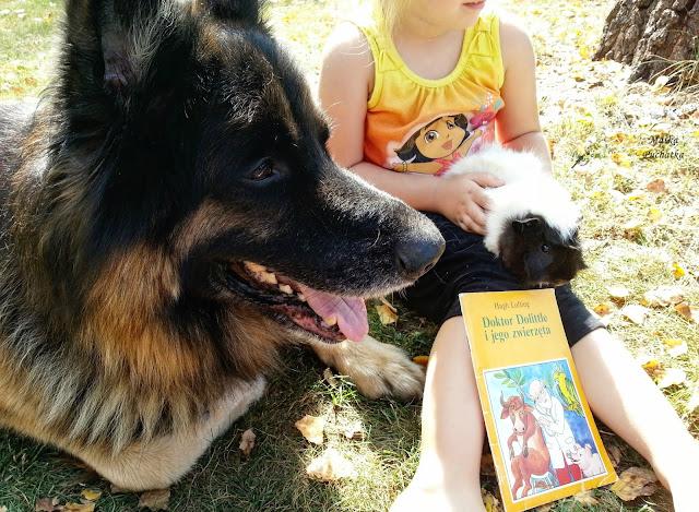 Dziecko, książka, zwierzak
