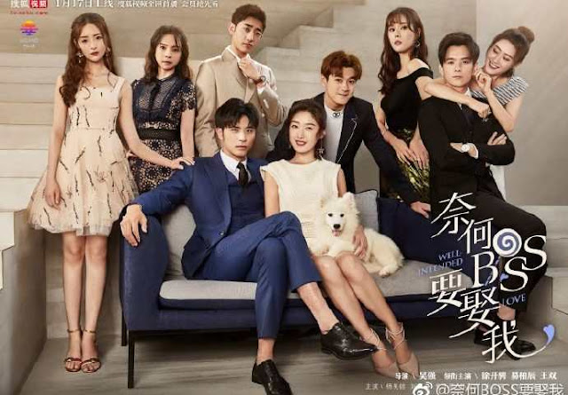 Download Drama China Well Intended Love Batch Subtitle Indonesia