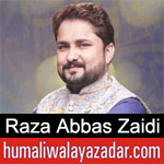 https://www.humaliwalayazadar.com/2020/03/raza-abbas-zaidi-manqabat-2020.html