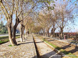 Relato de visita ao imponente sítio arqueológico da cidade de Éfeso, a partir da cidade de Selçuk, Turquia.