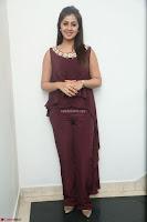 Nikki Galrani in a Brown Shining Sleeveless Gown at Nakshatram music launch ~  Exclusive 029.JPG