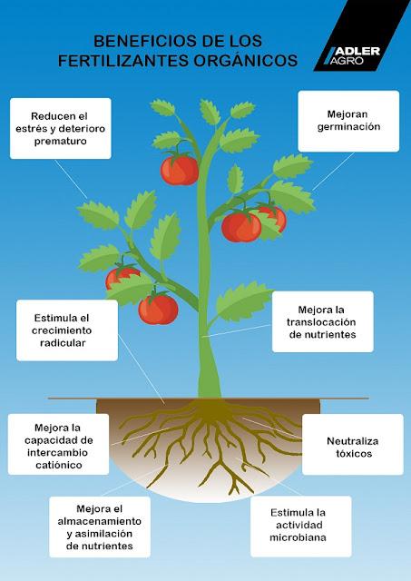 beneficios de fertilizantes orgánicos